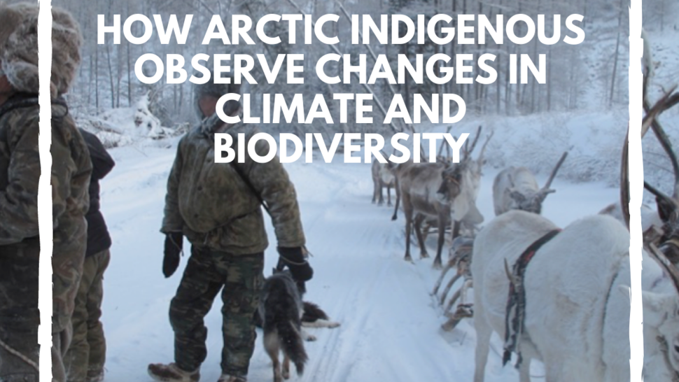 Version lg how arctic indigenous observe changes in climate and biodiversity